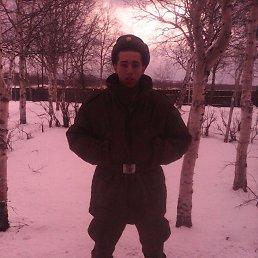 Михаил, 24 года, Дмитров