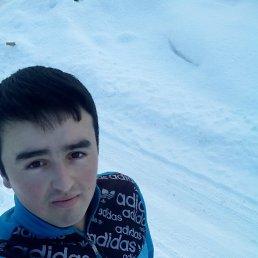 Дониёр, 24 года, Советский