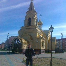 Виктор, 28 лет, Хабары