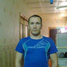 Михаил, 48 лет, Тосно