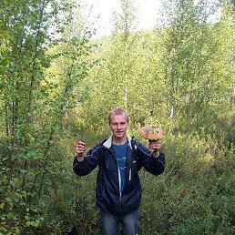 Владимир, 28 лет, Полярные Зори