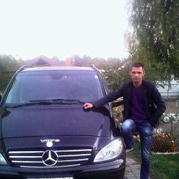 Владимир, 37 лет, Павлово