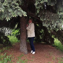 Надежда, 46 лет, Шепетовка