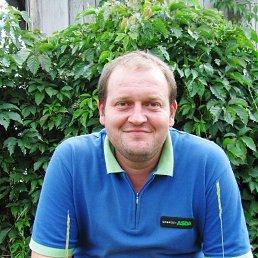 Сергей, 41 год, Ждановка