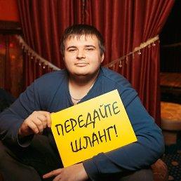 Евгений, 26 лет, Курск