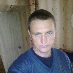 Александр, 49 лет, Новомиргород