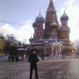 Алексей, 29 лет, Сергач