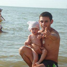 миша, 29 лет, Старовеличковская