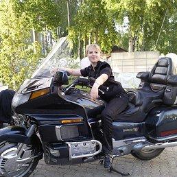 Натали, 37 лет, Брянск-4