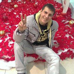 Andrey, 28 лет, Адыгейск
