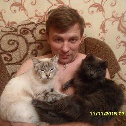Александр, 48 лет, Черемхово