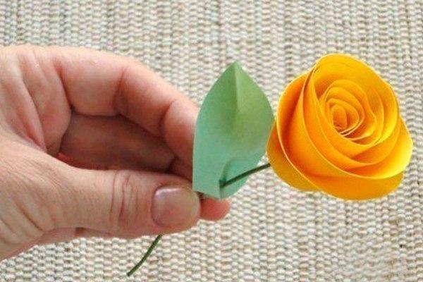 технологии опреснения розы спираль из бумаги пошагово фото главного героя