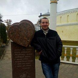 Сергей, 29 лет, Сумы