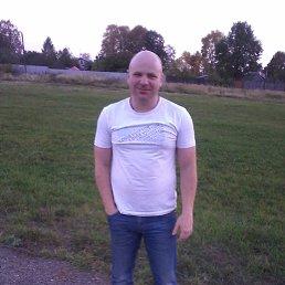 Илья, 38 лет, Иваново