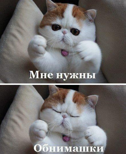 ...обнимашек :)