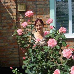 Светлана, 53 года, Александровка