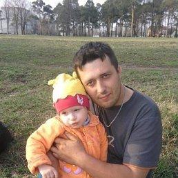 Илья, 34 года, Холм