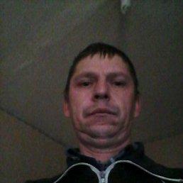 Сергей, 45 лет, Новоселицкое