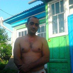 Аркадий, 36 лет, Ульяновск