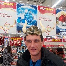 Владимир, 40 лет, Берислав