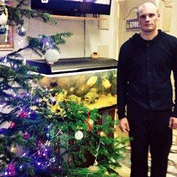 Игорь, 28 лет, Усолье 7-е