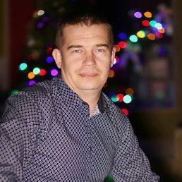 Василий, 39 лет, Орел