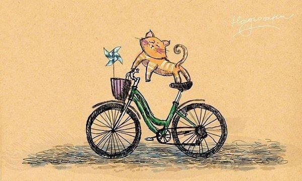 Смешные рисунки велосипедов, прекрасная