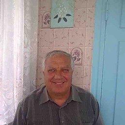 Николай, 66 лет, Жашков