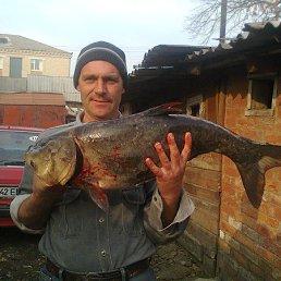 николай, 45 лет, Липовец
