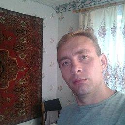 Александр, 43 года, Троицкое