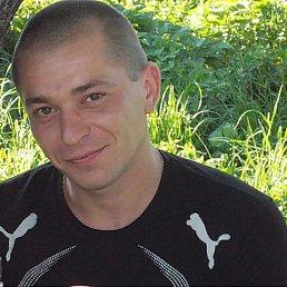 Антон, 39 лет, Новосиль