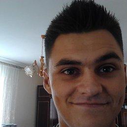 Vasyl, 23 года, Городок