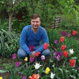 александр, 33 года, Егорлыкская