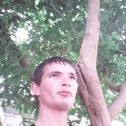Дмитрий, 30 лет, Новотроицкое