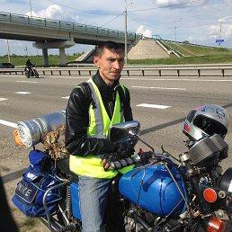 Николай, 34 года, Тбилисская