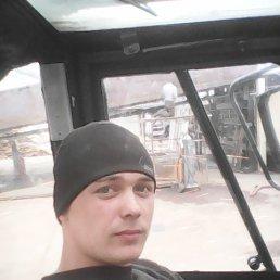 Сергей, 28 лет, Шарья