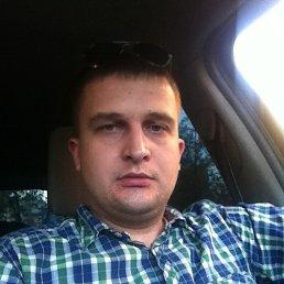 Алексей, 28 лет, Апрелевка
