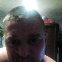 Николай, 40 лет, Междуреченск