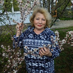 Галина, 63 года, Павловск