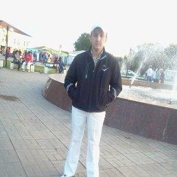 саша, 29 лет, Бежецк