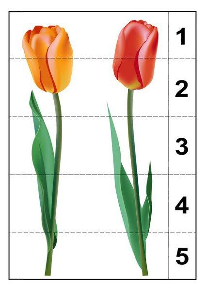 Разрезные картинки по теме весна