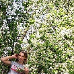 наташа, 42 года, Хмельник