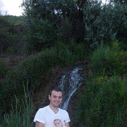 денис, 33 года, Кировское