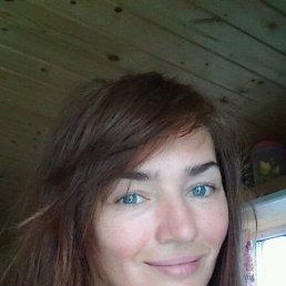 Лариса, 43 года, Санкт-Петербург