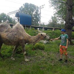 Артём, 24 года, Боровая