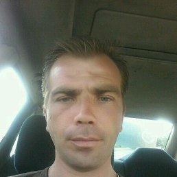 Дмитрий, 35 лет, Пестово