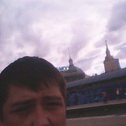 Александр, 28 лет, Балтийск