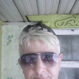 павел, 44 года, Брейтово