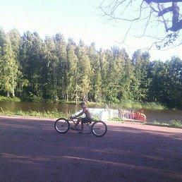 Фото Gevorg, Москва, 31 год - добавлено 17 августа 2016