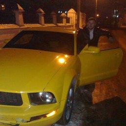 Алексей, 26 лет, Иваново-Вознесенск